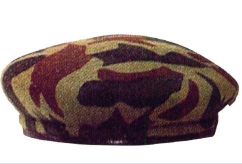 贝雷帽款式